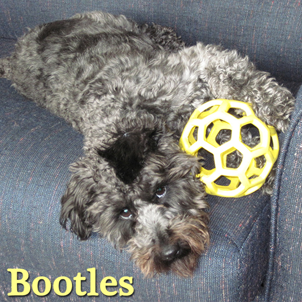 bootles