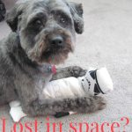 Lost in Space?