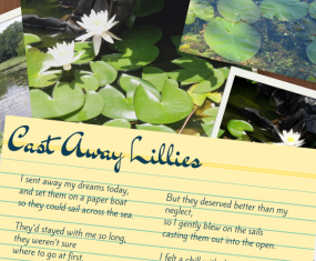 Cast Away Lillies