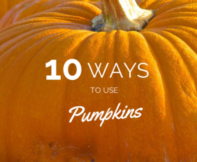 10 Different Ways to Use and Reuse Pumpkins