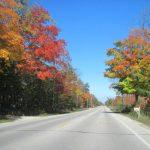 Taking a Fall Drive