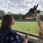 And Then I Got to Feed a Giraffe