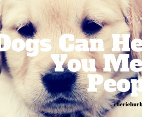 10 Ways Dogs Can Help You Meet Other People