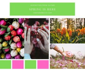 Inspiration From Spring