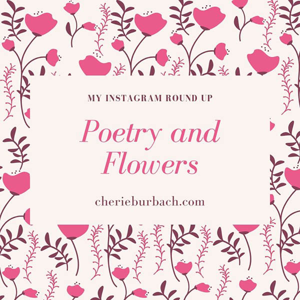 Poetry and Flowers – My Instagram Round Up
